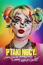 Ptaki Nocy Film Online